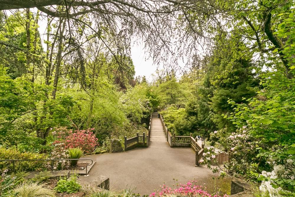 Crystal_Springs_Rhodie_Gardens_1