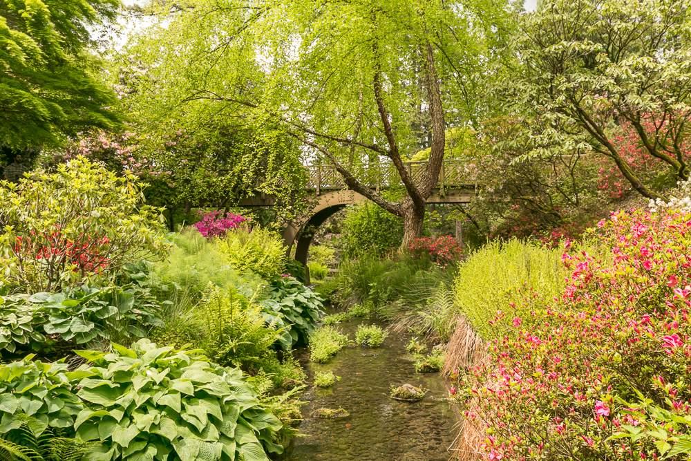 Crystal_Springs_Rhodie_Gardens_3