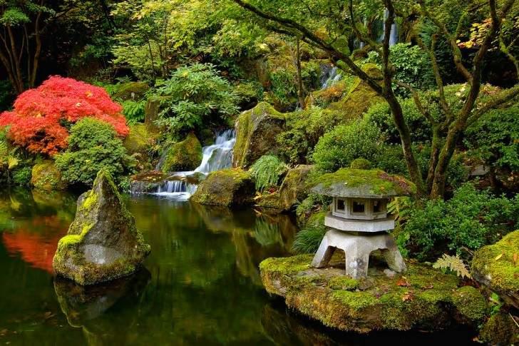 Japanese_Gardens_Pond